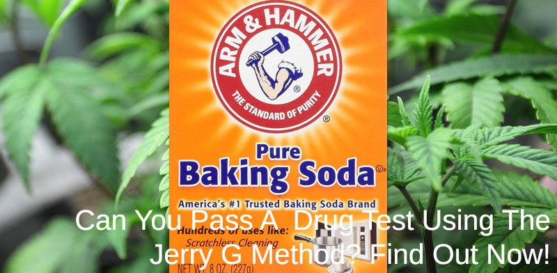 pass a drug test using the jerry g method